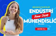pinar_susup